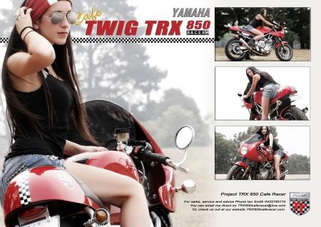 trx flyer